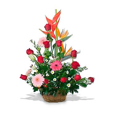 Full Love Gift